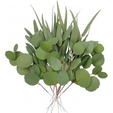 Miracliy 12 PCS Artificial Eucalyptus Stems, Mixed Eucalyptus Leaves Branches, Real Touch Eucalyptus Plant for Vases, Wedding Greenery Bouquet Fillers